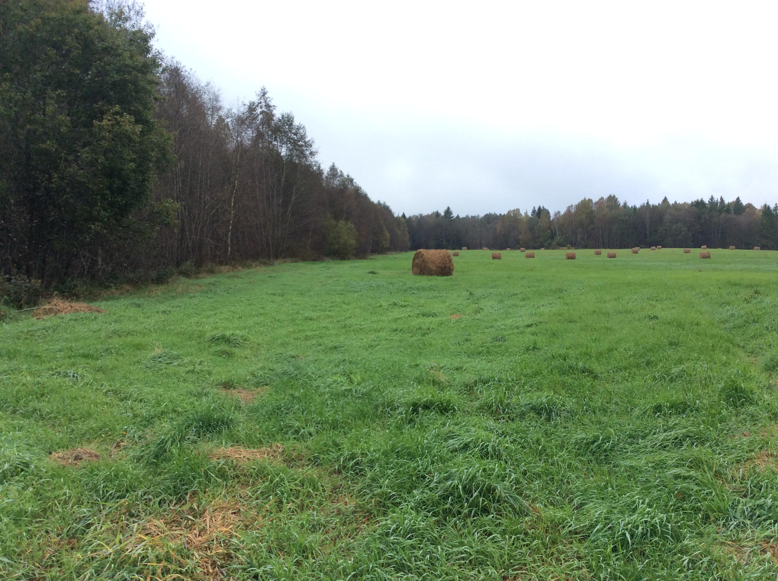 land zu verkaufen in estland , ackerflächen waldflächen, harjumaa