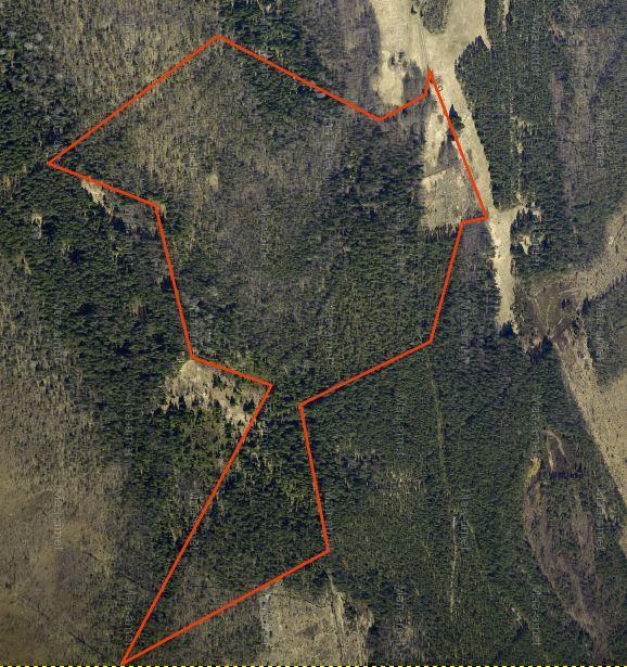 Suuri metsäkiinteistö Hiidenmaalla