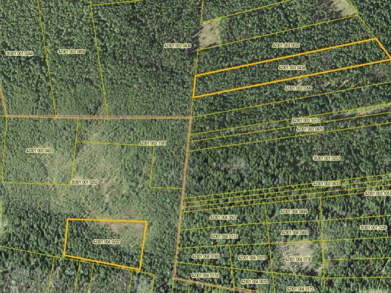 Лесная земля в Национальном парке Лахемаа