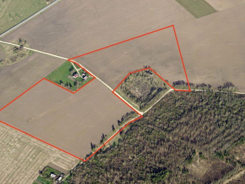 Very good farmland near Väike-Maarja