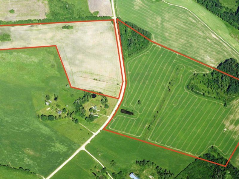 Две сельхозугодья возле Сангасте