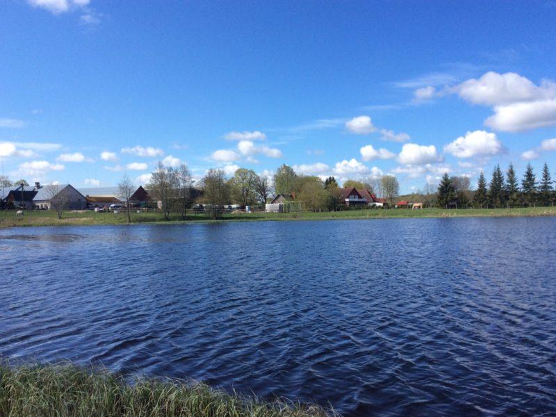 The property beside lake Ruila