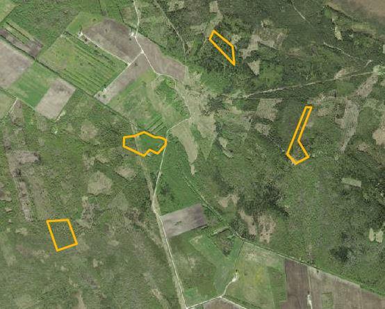25 Hektar Waldfläche!