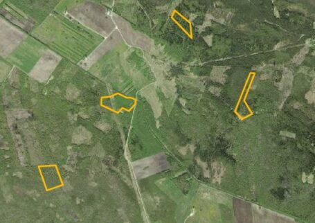 25 hectares of forest land!