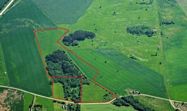 Build a ranch in Estonia!