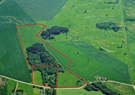 Bauen Sie eine Ranch in Estland!